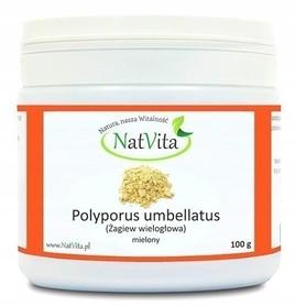 NatVita Polyporus Umbellatus Grzyb Mielony 100g